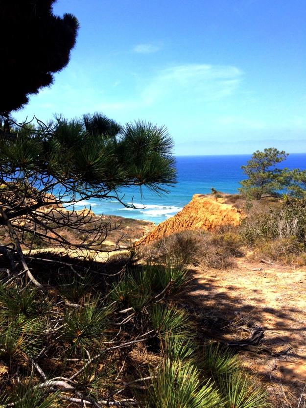 Torrey Pines Vista
