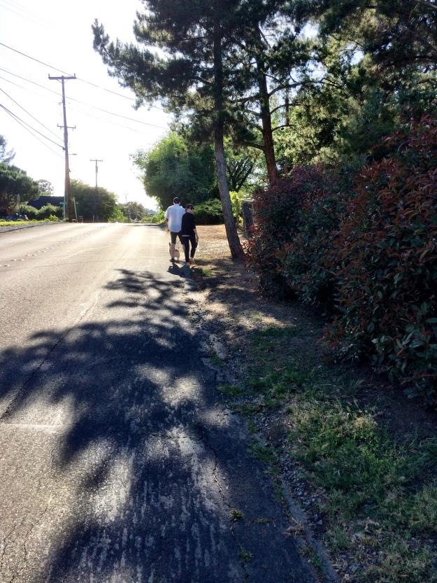 walking Roscoe