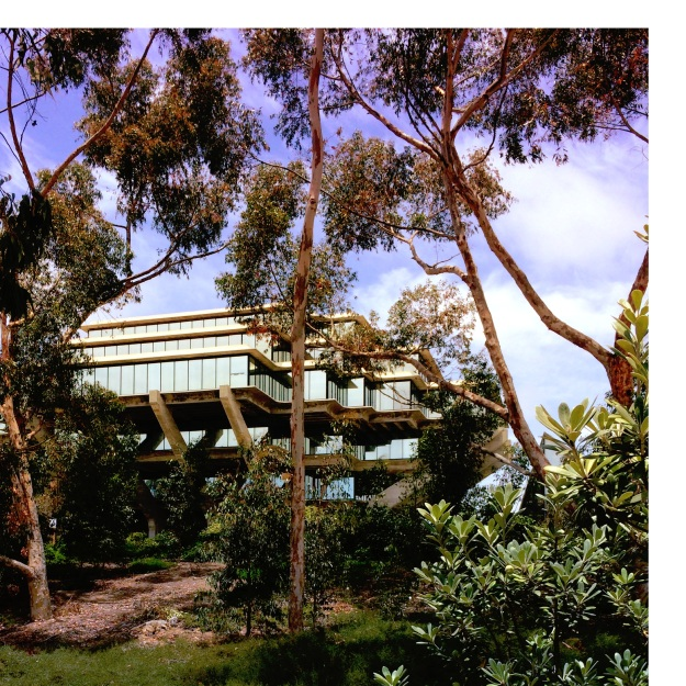 UCSD-summer