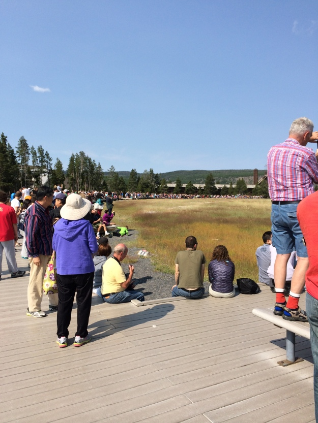 viewers of old faithful