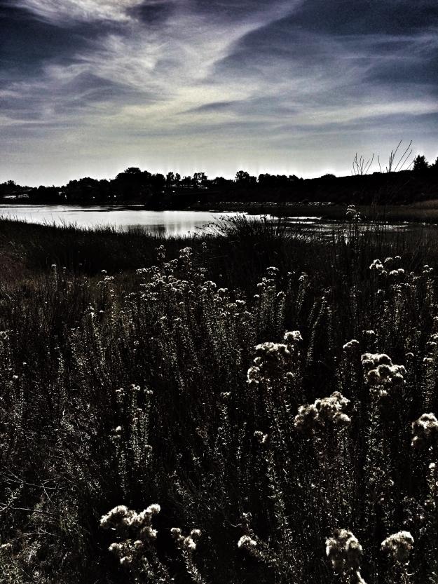 dramatic lagoon