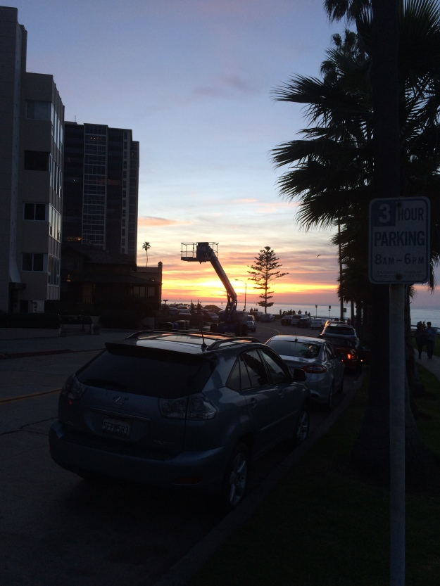 crane and tree