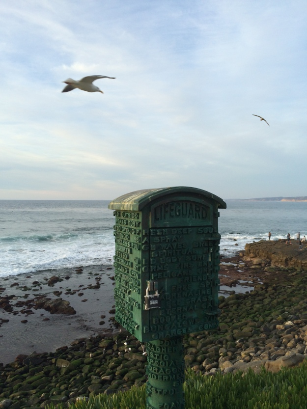 locked box and seagull